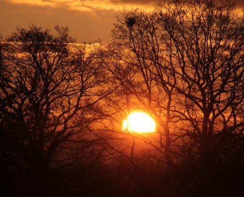 sunrise-1360350_1280